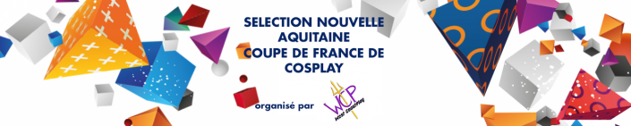 Image d'illustration de la news GA2019, sélection Nouvelle Aquitaine de la Coupe de France de Cosplay !